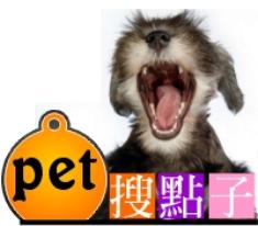 狗牌製作,寵物牌訂做,個性化狗牌製作【搜點子寵物牌製造工廠】